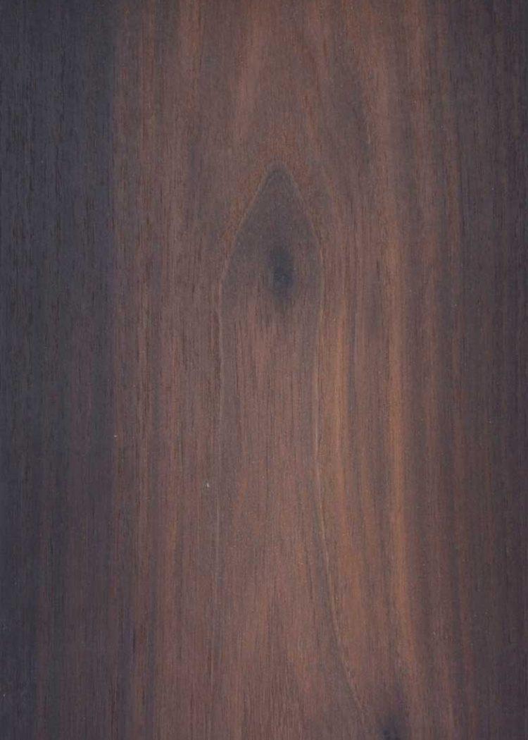 Acacia Affumicata